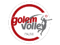 Golem Software Palmi